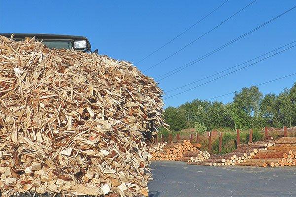 Holzspäne als Sägenebenprodukt im Sägewerk zur Vermarktung